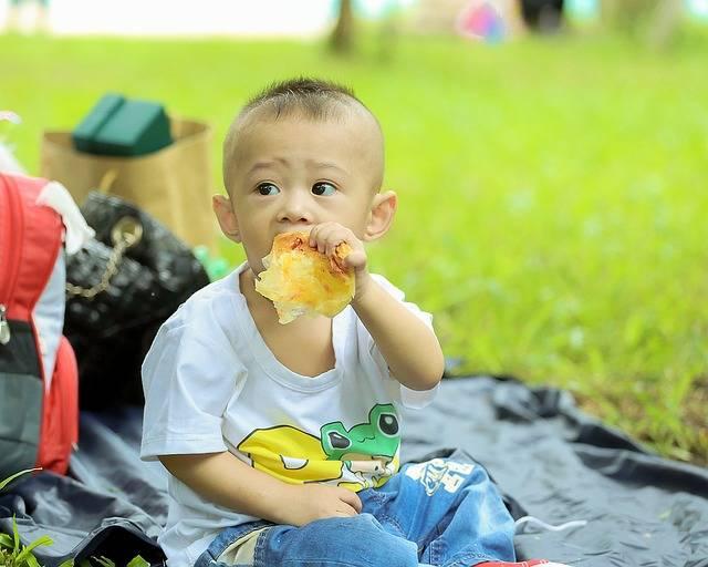 Free photo: Child, Kid, Kushin, Eat, The Park - Free Image on Pixabay - 1516233 (21547)