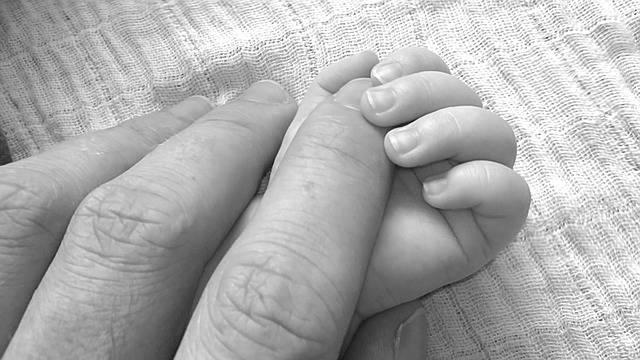 Free photo: Baby, Sweet, Happy, Human, Papa - Free Image on Pixabay - 203048 (22178)