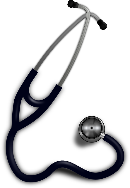 Free vector graphic: Stethoscope, Doctor, Health, Heart - Free Image on Pixabay - 147700 (22928)