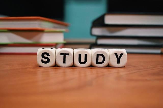 Free photo: Study, School Learn, Education - Free Image on Pixabay - 1968077 (23002)