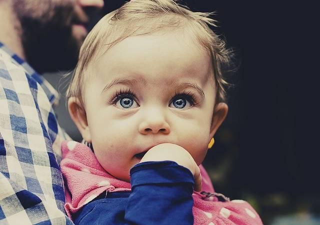 Free photo: Baby, Child, Toddler, Looking, Girl - Free Image on Pixabay - 933097 (29408)