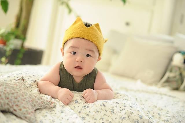 Free photo: Baby, One Hundred Days, Bye, Todler - Free Image on Pixabay - 1270023 (29410)