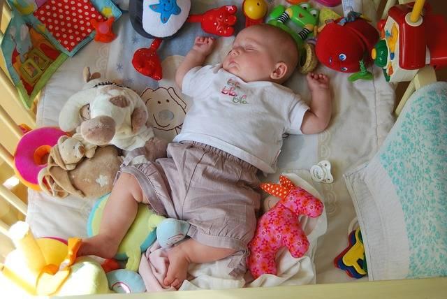 Free photo: Child, Sleep, Toys, Baby, People - Free Image on Pixabay - 228414 (29413)