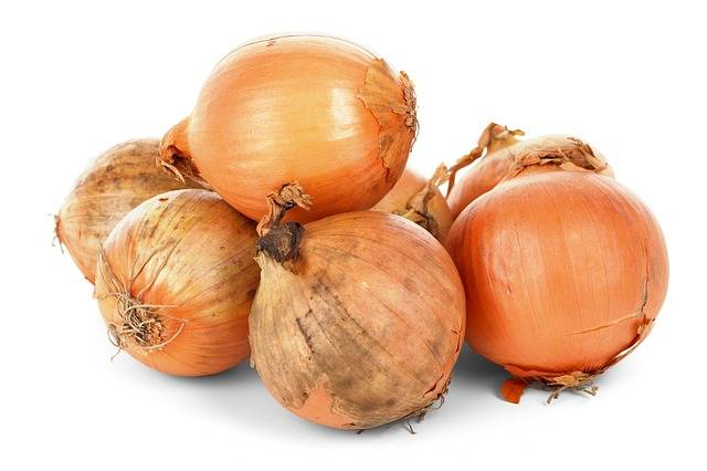 Free photo: Onion Bulbs, Food, Fresh, Healthy - Free Image on Pixabay - 84722 (30705)