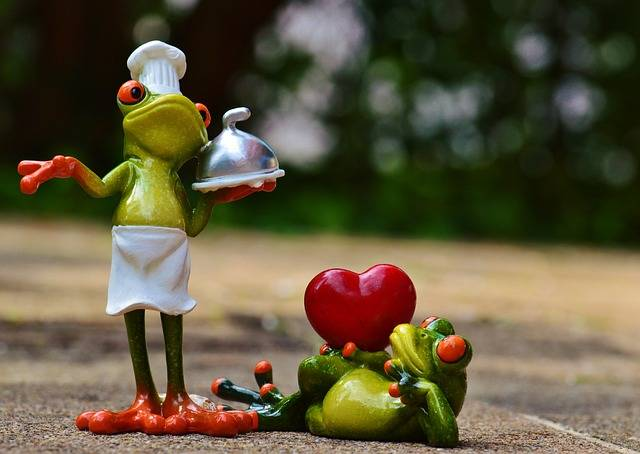 Free photo: Frog, Cooking, Love - Free Image on Pixabay - 927769 (32450)
