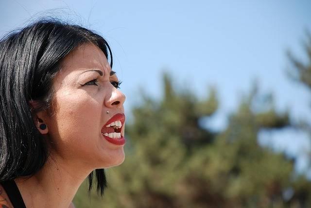 Free photo: Brawlin Betties, Anger, Yelling - Free Image on Pixabay - 1197374 (32515)