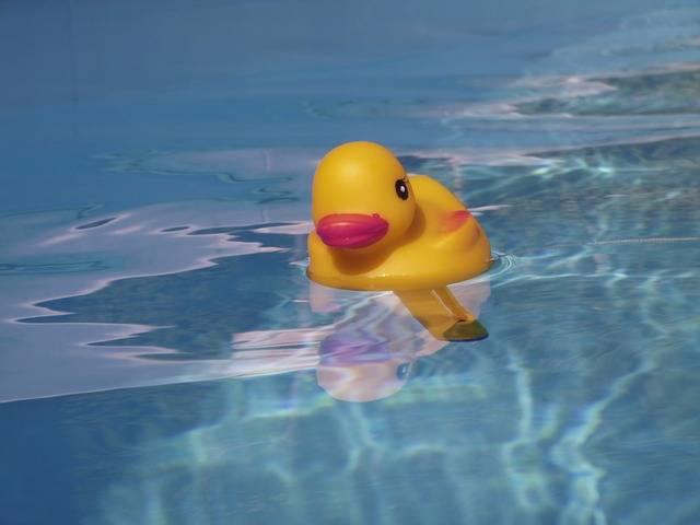 Free photo: Quietschentchen, Pool, Summer, Swim - Free Image on Pixabay - 1011449 (35663)