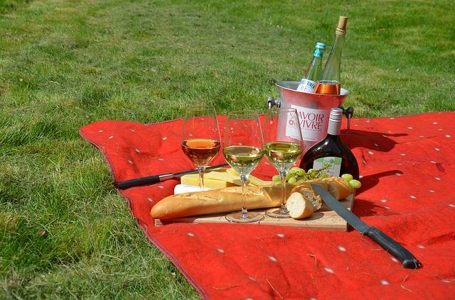 Free photo: Picnic, Savoir Vivre, Wine, Blanket - Free Image on Pixabay - 977866 (36657)
