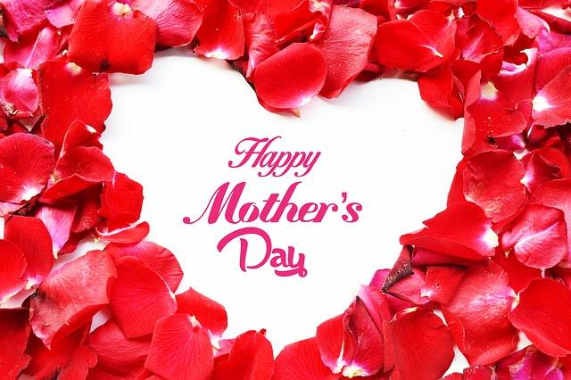 Free photo: April, Background, Beauty, Bloom - Free Image on Pixabay - 723028 (37081)
