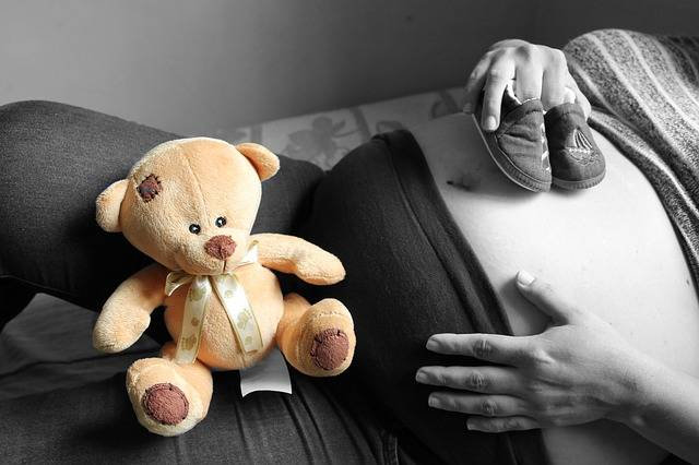 Free photo: Pregnancy, Bear, Black, New Mom - Free Image on Pixabay - 1905645 (38066)