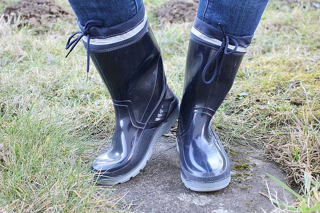 Free photo: Rubber Boots, Boots, Shoes - Free Image on Pixabay - 623117 (39442)