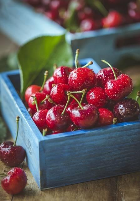 Free photo: Cherry, Cherries, Fruit - Free Image on Pixabay - 1534063 (39678)