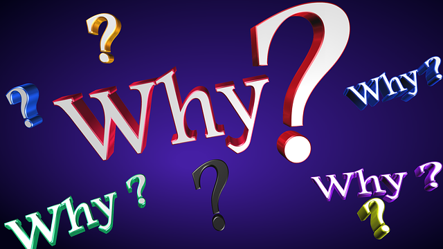 Free illustration: Why, Text, Question, Business - Free Image on Pixabay - 1780727 (42020)