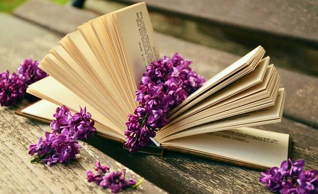 Free photo: Book, Read, Relax, Lilac, Bank, Old - Free Image on Pixabay - 759873 (42524)