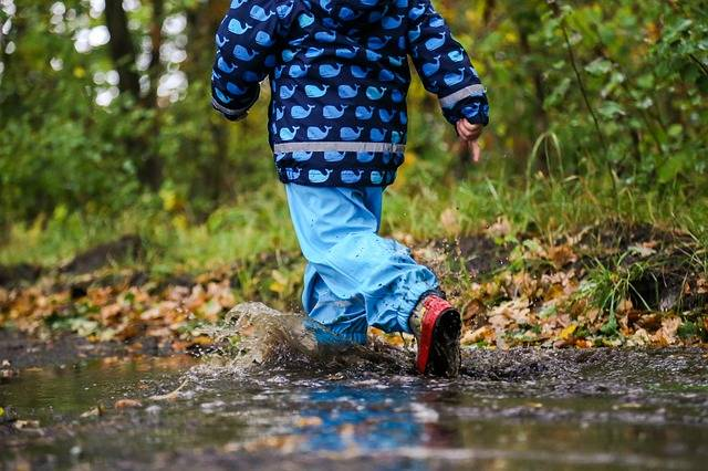 Free photo: Boy, Puddle, Autumn, Raining - Free Image on Pixabay - 1722570 (43269)