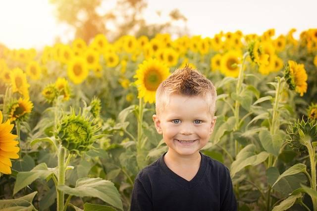 Free photo: Child, Sun, Sunflowers, Field - Free Image on Pixabay - 2086910 (44904)