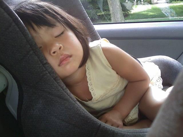 Free photo: Child, Sleeping, Car Seat, Girl - Free Image on Pixabay - 85321 (46933)