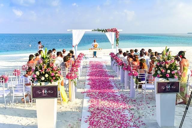 Free photo: Aisle, Beach, Celebration, Ceremony - Free Image on Pixabay - 1854077 (47974)