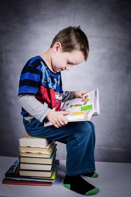 Free photo: Child, Book, Boy, Studying - Free Image on Pixabay - 315049 (48078)