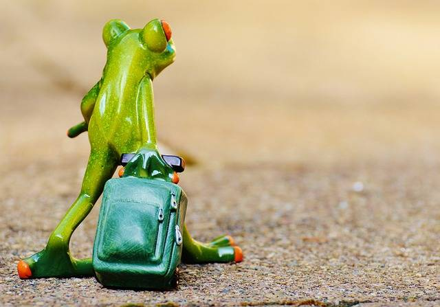 Free photo: Frog, Farewell, Travel, Luggage - Free Image on Pixabay - 897420 (50072)