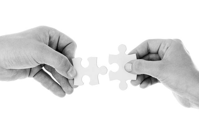 Free photo: Connect, Connection, Cooperation - Free Image on Pixabay - 20333 (50171)