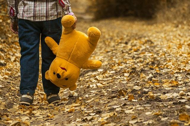 Free photo: Child, Autumn, Bear, Leaves, Boy - Free Image on Pixabay - 1051288 (51956)