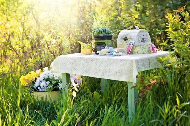 Free photo: Planting, Herbs, Summer, Gardening - Free Image on Pixabay - 780738 (52508)