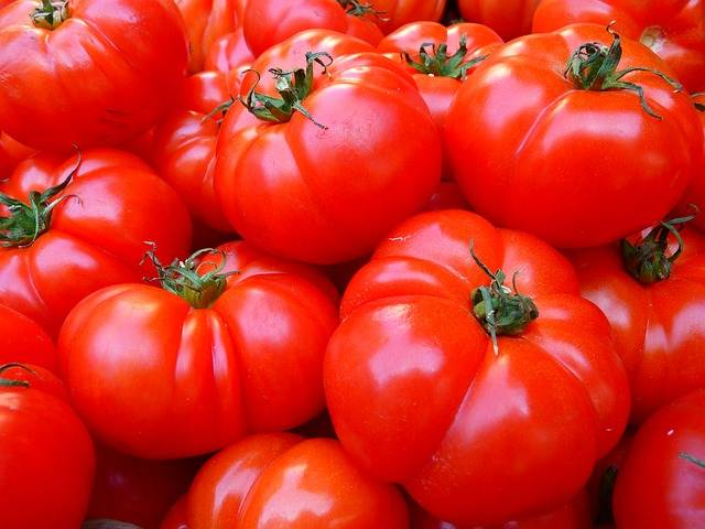 Free photo: Tomatoes, Vegetables, Red, Food - Free Image on Pixabay - 5356 (53047)