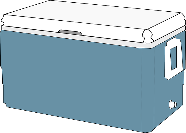 Free vector graphic: Cooler, Ice Chest, Large, Cover - Free Image on Pixabay - 42549 (54488)