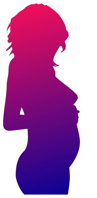 Free illustration: Pregnant, Woman, Women, Silhouette - Free Image on Pixabay - 914689 (55144)