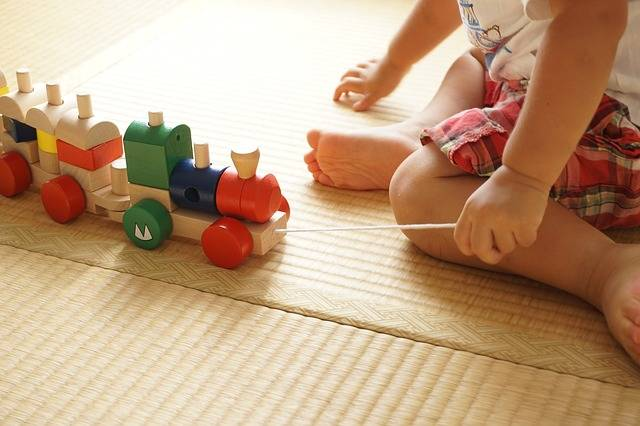 Free photo: Toddler, Building Block, Pull - Free Image on Pixabay - 2009821 (55440)