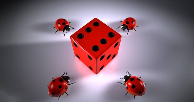 Free photo: Cube, Lucky Ladybug, Puzzles - Free Image on Pixabay - 1950909 (57228)