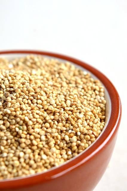 Free photo: Quinoa, Bowl, Grain, Healthy, Food - Free Image on Pixabay - 1243591 (57549)