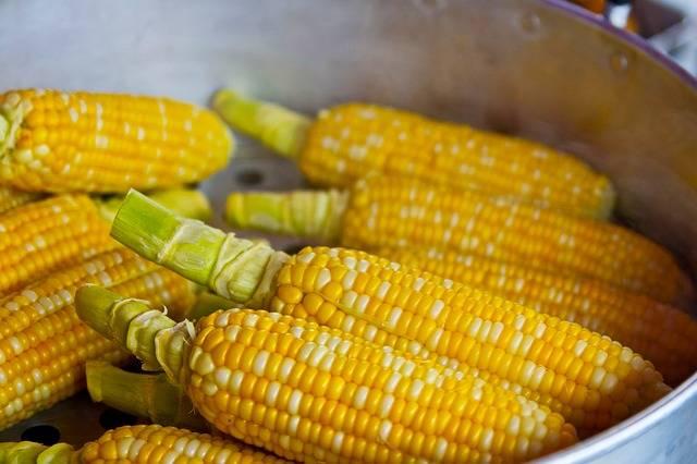 Free photo: Pop Corn, Yellow, Pop, Popcorn - Free Image on Pixabay - 785074 (57837)