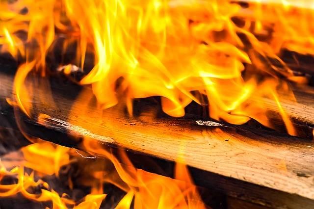 Free photo: Fire, Wood, Flame, Campfire - Free Image on Pixabay - 1707042 (58230)