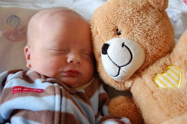 Free photo: Baby, Love, Bear, Child, Infant - Free Image on Pixabay - 2151764 (60966)