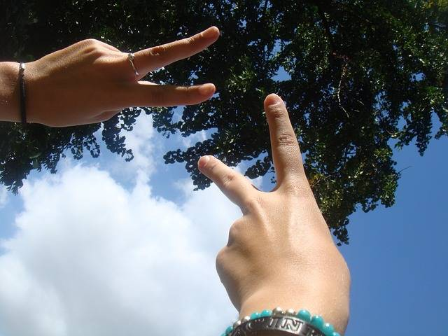 Free photo: Peace, Peace Sign, Fingers, Hand - Free Image on Pixabay - 705174 (61873)