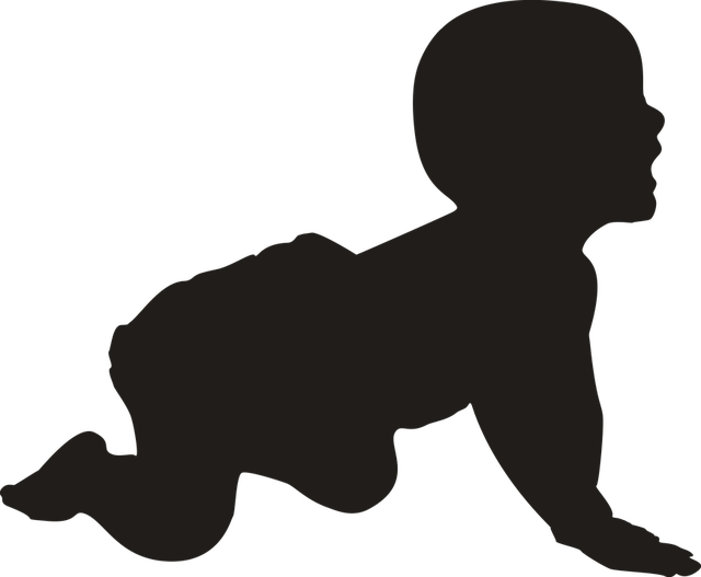 Free illustration: Silhouette, Baby, Crawling, Young - Free Image on Pixabay - 1221418 (63966)