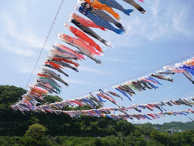Free photo: Carp Streamer, May, Boys' Festival - Free Image on Pixabay - 1822718 (64355)