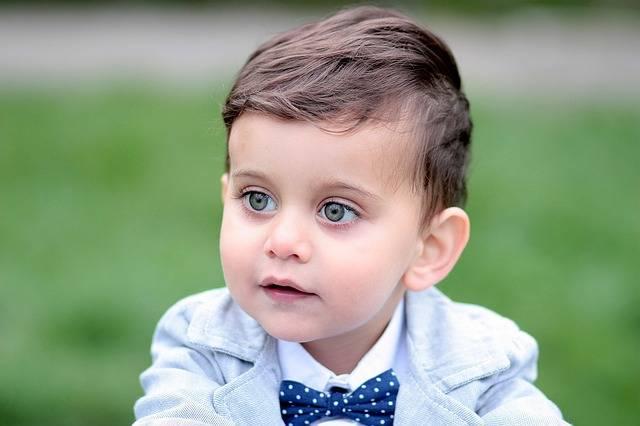 Free photo: Boy, Toddler, Green Eyes, Portrait - Free Image on Pixabay - 1397818 (64497)