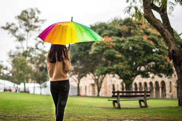 Free photo: Rain, Umbrella, Girl, Melancholy - Free Image on Pixabay - 1599790 (66415)