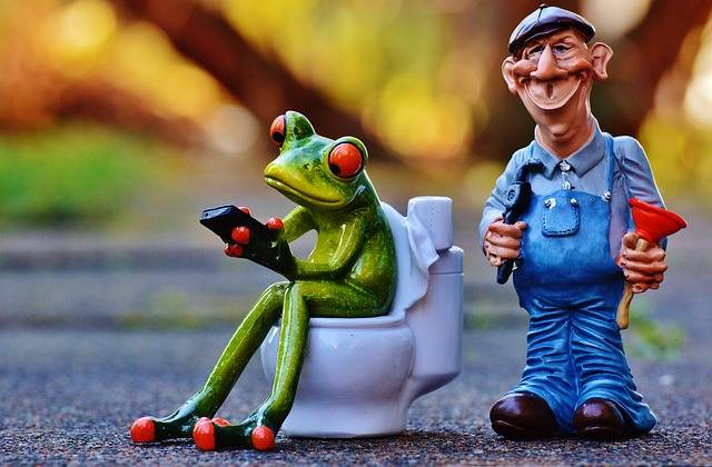 Free photo: Plumber, Frog, Loo, Pömpel, Repair - Free Image on Pixabay - 1160822 (67618)