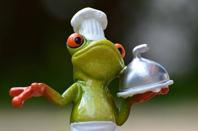 Free photo: Frog, Cooking, Eat, Kitchen - Free Image on Pixabay - 927768 (67761)
