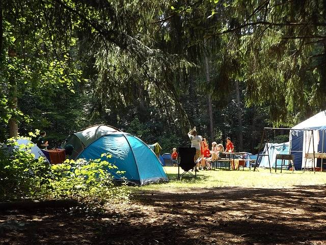 Free photo: Camp, Forest, Summer, Holidays - Free Image on Pixabay - 1163419 (68396)