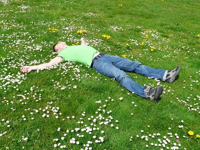 Free photo: Rest, Relax, Concerns, Cozy, Sleep - Free Image on Pixabay - 52495 (69278)