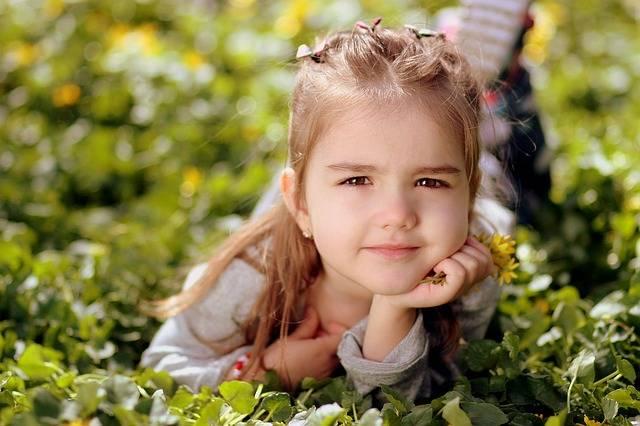 Free photo: Girl, Toddler, Long Hair, Portrait - Free Image on Pixabay - 1250679 (70762)