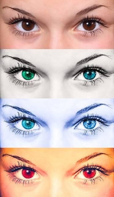 Free photo: Eyes, Female, Collage, Woman - Free Image on Pixabay - 586992 (70834)