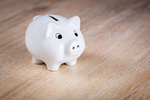 Free photo: Piggy Bank, Save, Piglet - Free Image on Pixabay - 1595992 (73510)