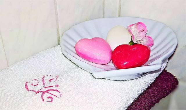 Free photo: Soap, Guest Soap, Heart, Soap Dish - Free Image on Pixabay - 2143940 (73861)