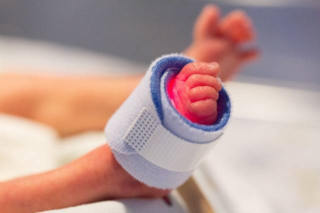 Free photo: Foot, Preemie, Child, Newborn - Free Image on Pixabay - 1689784 (74192)